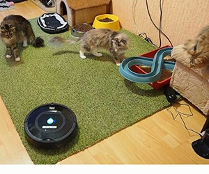 iRobot Roomba 770 có thể quét và hút bụi chỉ với một nút chạm nhẹ