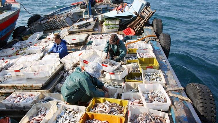 Cần có đá để bảo quản cá trên tàu