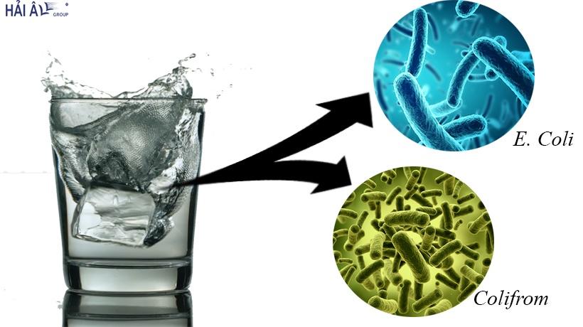 Nước đá bẩn chứa nhiều vi khuẩn gây bệnh đường ruột, viêm gan siêu vi A, nhiễm khuẩn mủ trực xanh.
